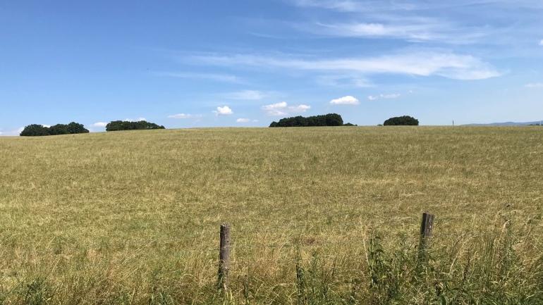 """eine Landschaft wie aus """"Unsere kleine Farm"""""""
